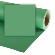 Бумажный фон Colorama 164 Applle Green